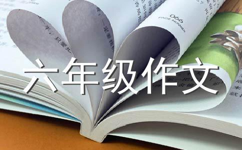包饺子400字作文