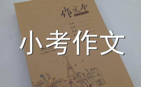 畅想2008