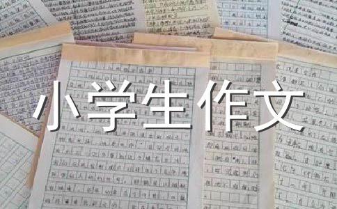 中国春节到了(Chinese New Year is coming soon)